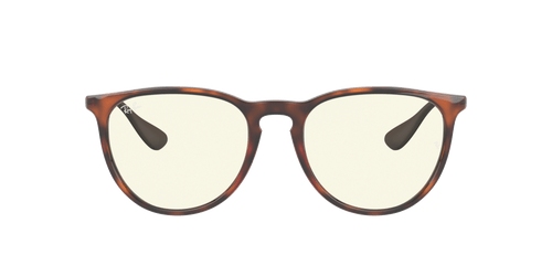 Ray-Ban RB4171 ERIKA CLASSIC 54 YOUNGSTER
